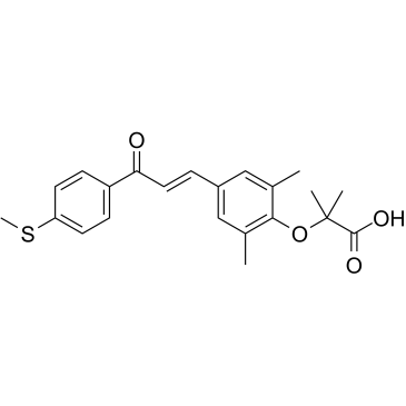 GFT505; elafibranor E